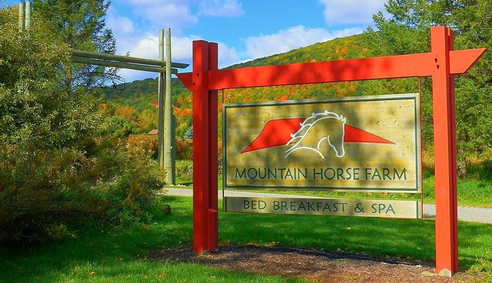 Mountain Horse Farm