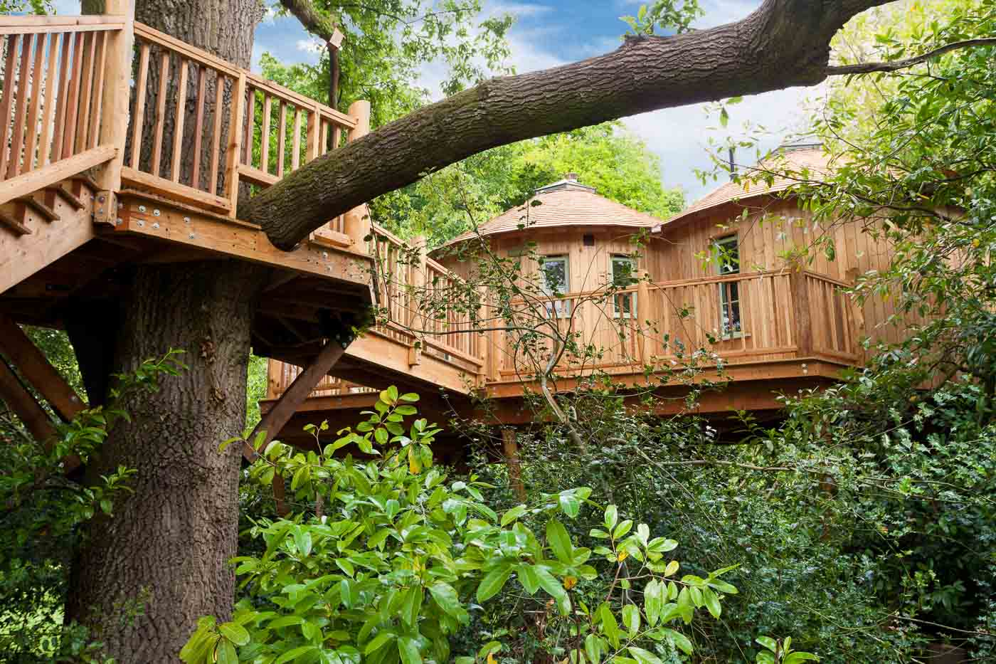 resources articles the top 5 treehouses glamping com